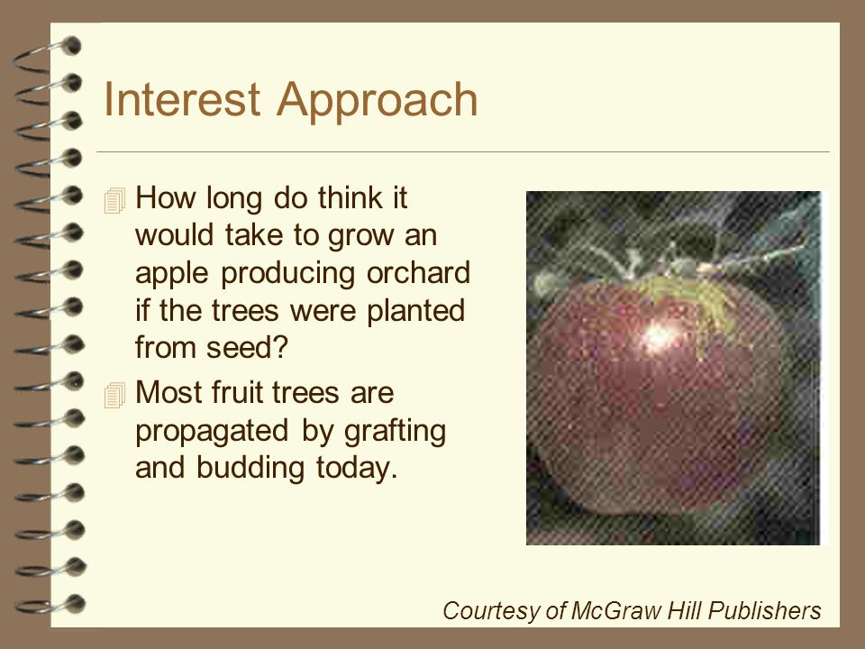 Horticultural Science Horticulture Cd Ppt Download