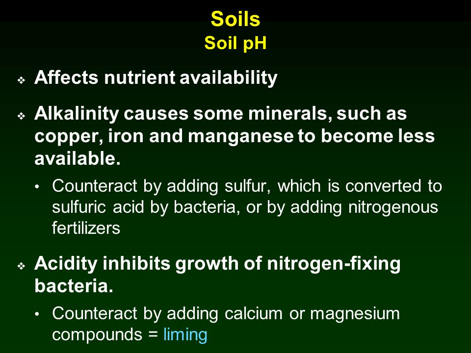 Chapter 5 Roots And Soils Lecture Outline Ppt Video