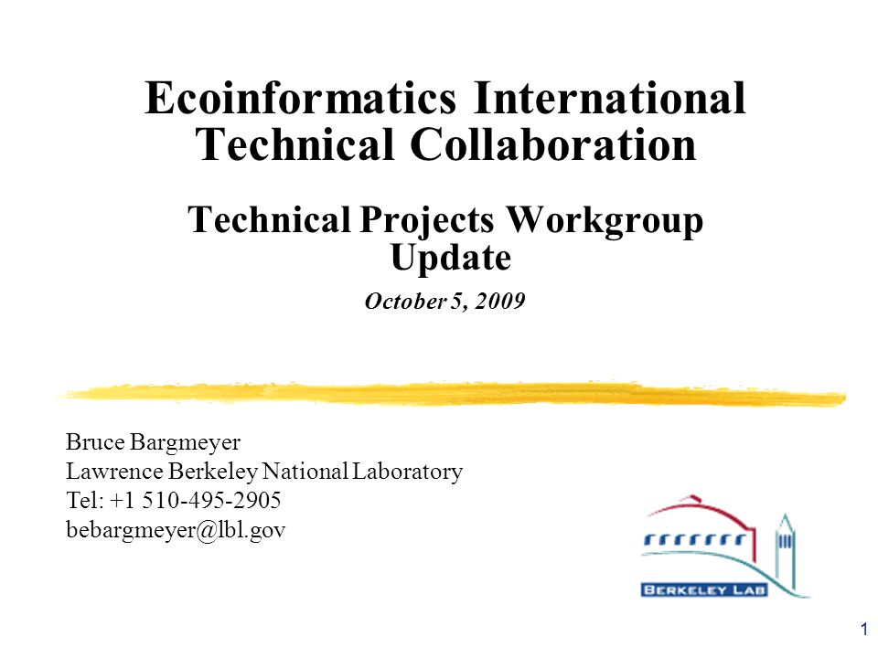 Ecoinformatics International Technical Collaboration
