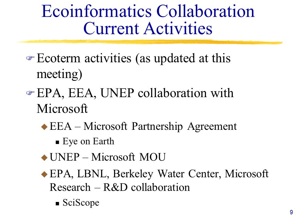 Ecoinformatics Collaboration Current Activities
