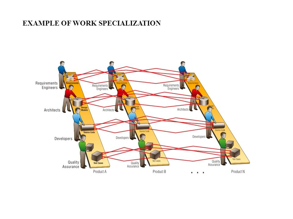 EXAMPLE OF WORK SPECIALIZATION