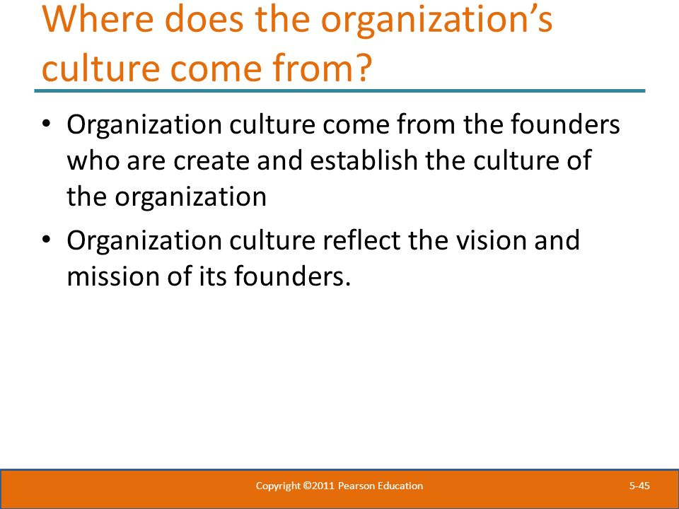 Where does the organization's culture come from