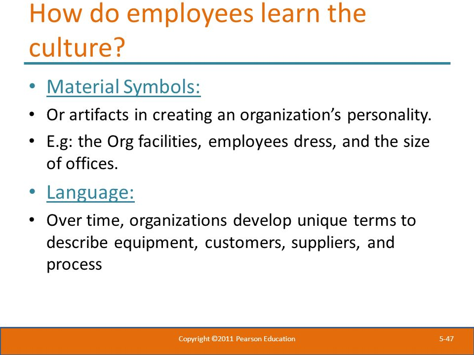 How do employees learn the culture