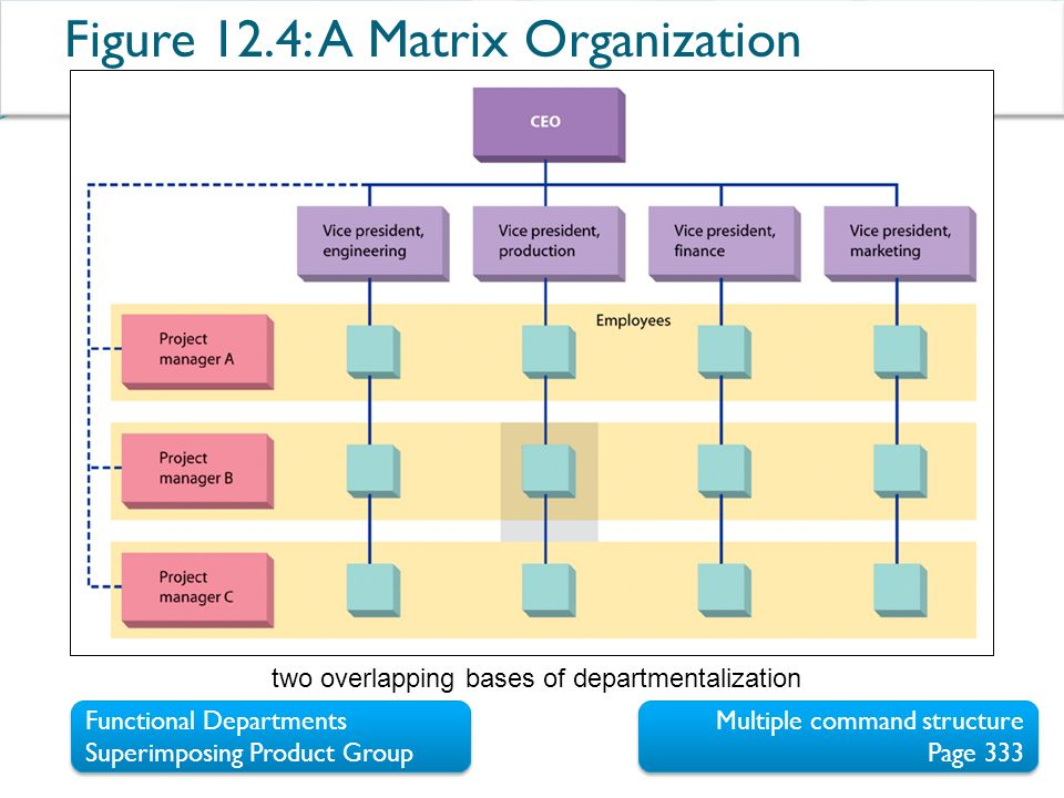 the formal organization structure functional matrix project based or a hybrid of these Functional and matrix organization a functional organization structure is a classical hierarchy in which each employee has a single superior employees are the projects priority is viewed lower than operations by the functional manager in these organizations.