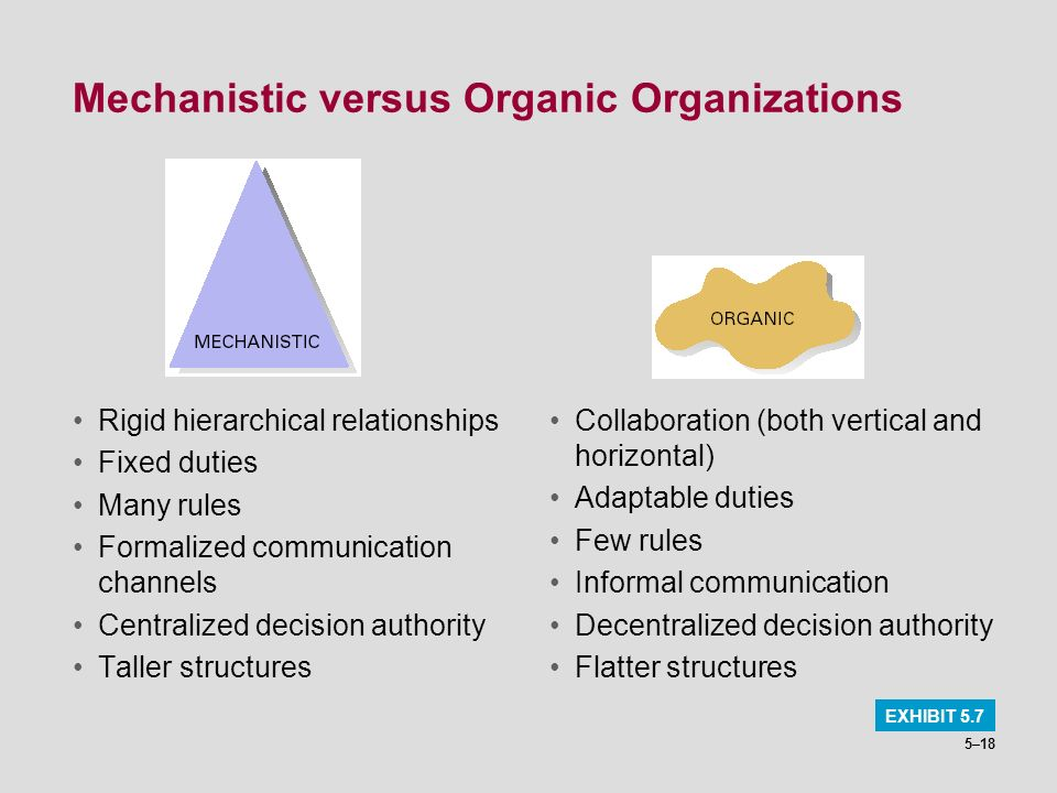 what is mechanistic organization