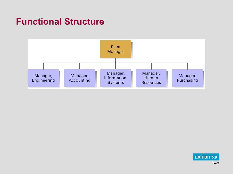 Functional Structure EXHIBIT 5.8
