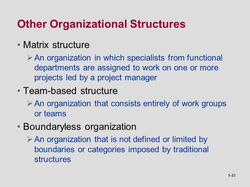 Other Organizational Structures