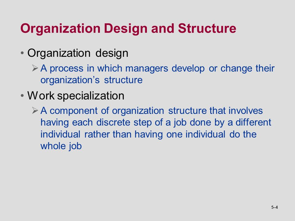 Basic Organization Designs  Ppt Video Online Download