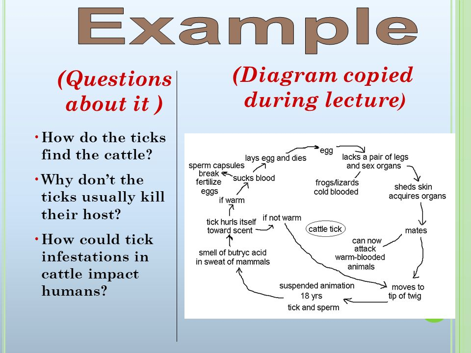 Example (Diagram copied (Questions about it ) during lecture)