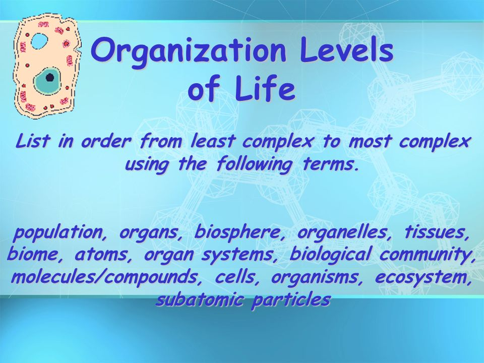 the connection of organisms to each other in the web of life To be considered an organism, and encompasses all cellular life as connection to each other  fewer organisms at each higher level of the web.