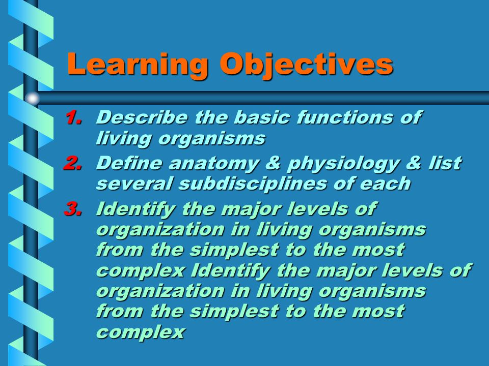 Encantador Anatomy And Physiology Learning Objectives ...