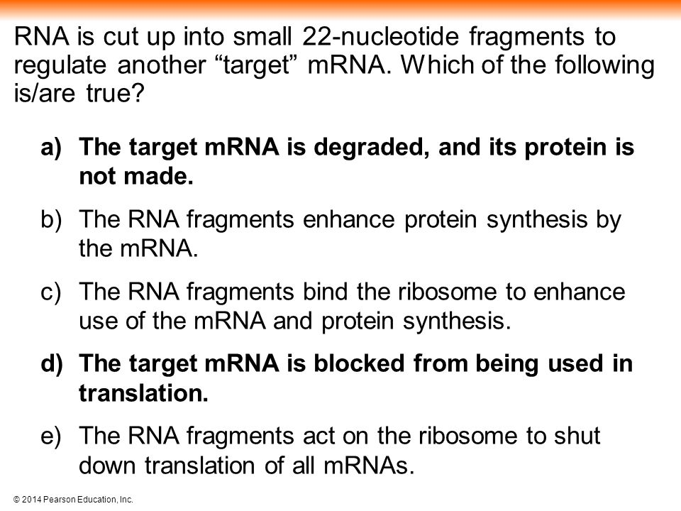 RNA is cut up into small 22-nucleotide fragments to regulate another target mRNA. Which of the following is/are true