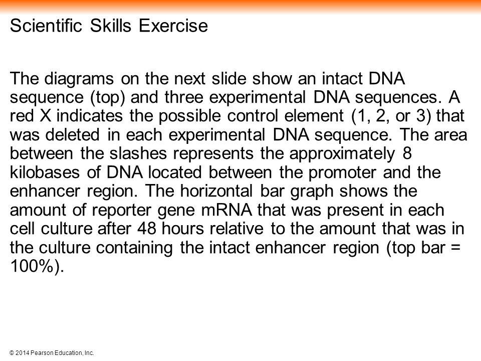 Scientific Skills Exercise