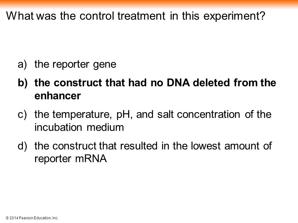 What was the control treatment in this experiment