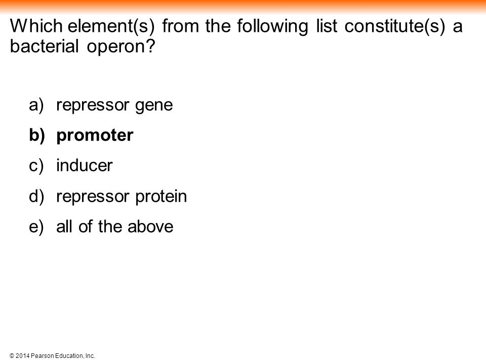 Which element(s) from the following list constitute(s) a bacterial operon