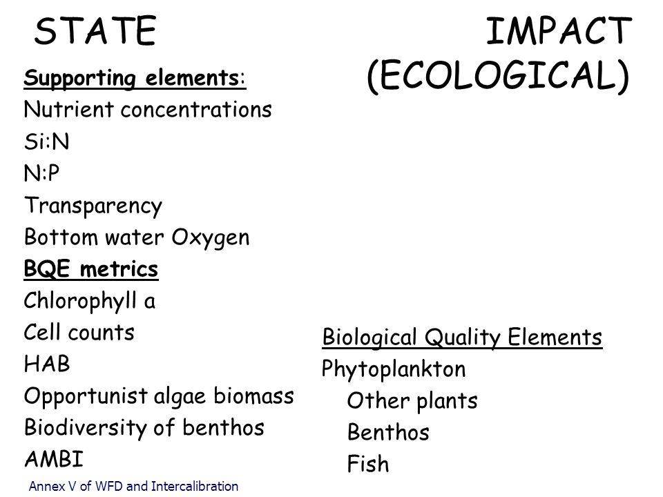 STATE IMPACT (ECOLOGICAL)