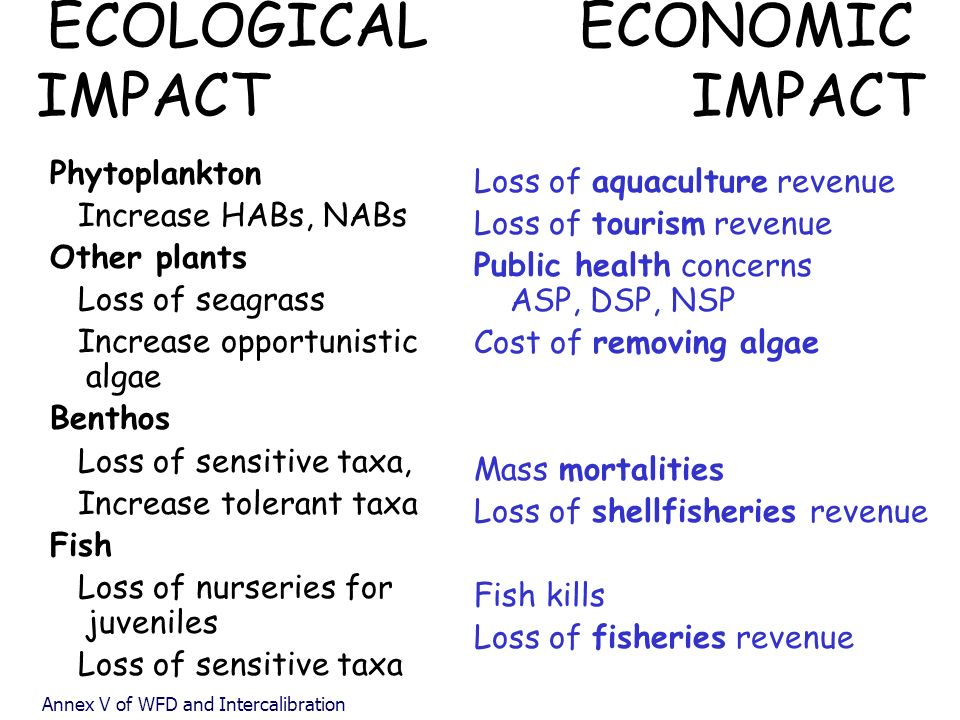 ECOLOGICAL ECONOMIC IMPACT IMPACT