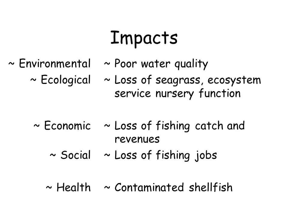 Impacts Environmental Ecological Economic Social Health