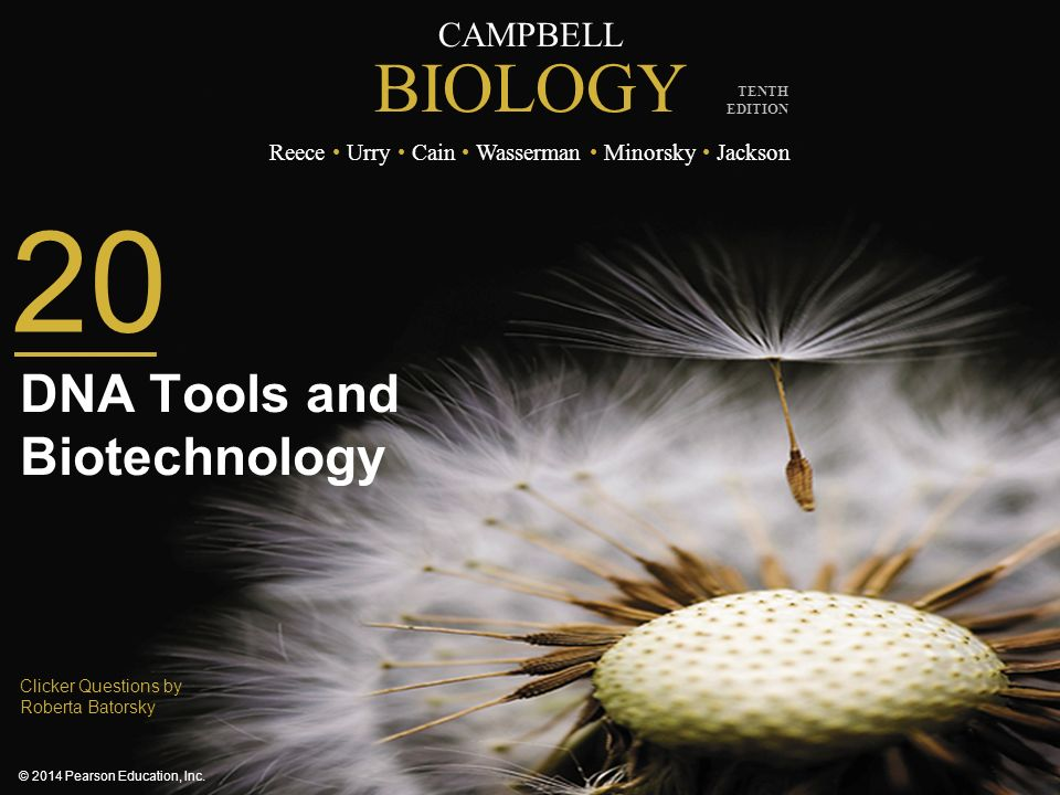 DNA Tools and Biotechnology