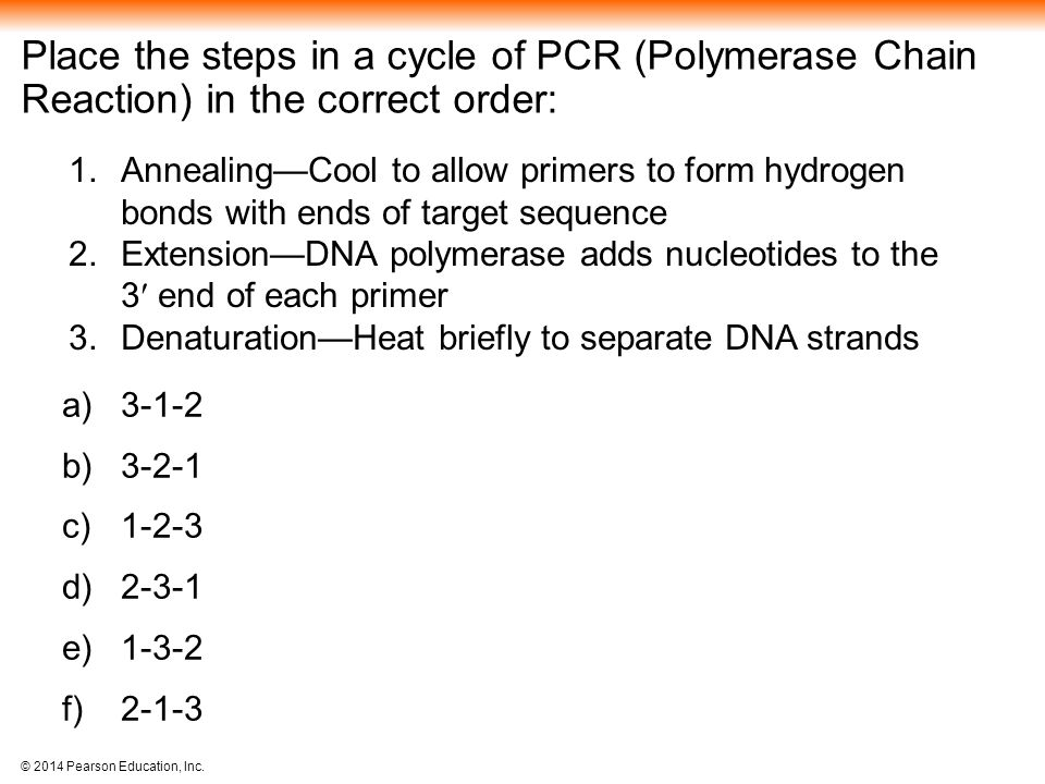 Place the steps in a cycle of PCR (Polymerase Chain Reaction) in the correct order: