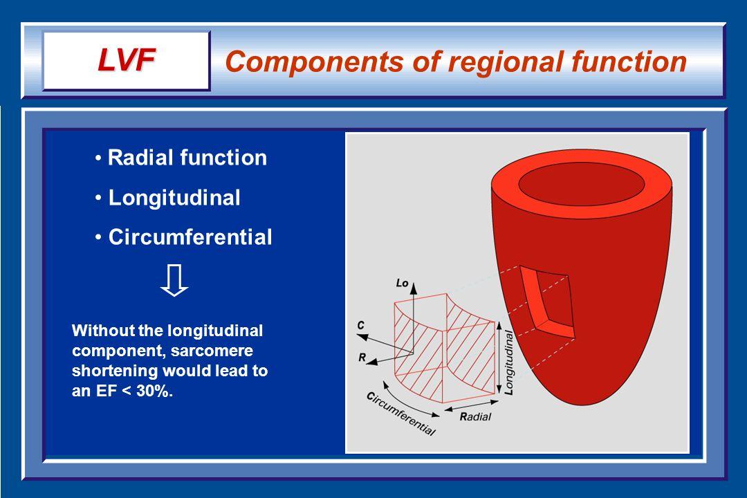 LVF Components of regional function Radial function Longitudinal