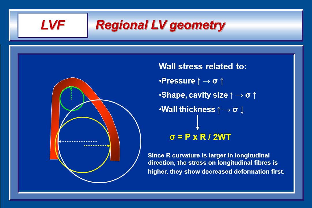 LVF Regional LV geometry Wall stress related to: σ = P x R / 2WT