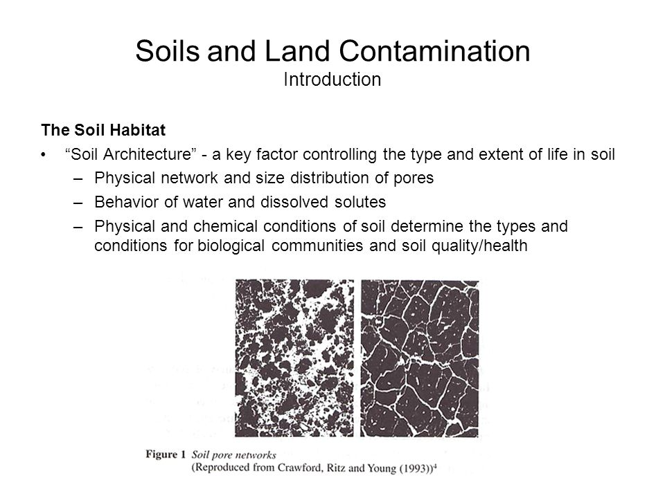 Air water and land pollution ppt download for Introduction of soil
