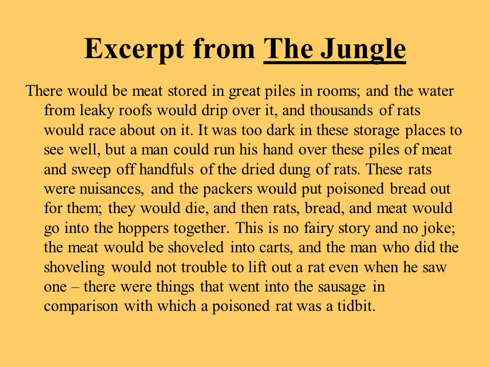 Excerpt from The Jungle
