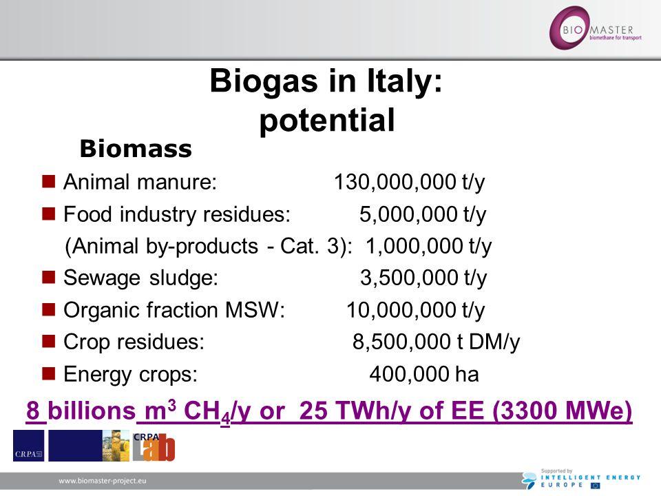 8 billions m3 CH4/y or 25 TWh/y of EE (3300 MWe)