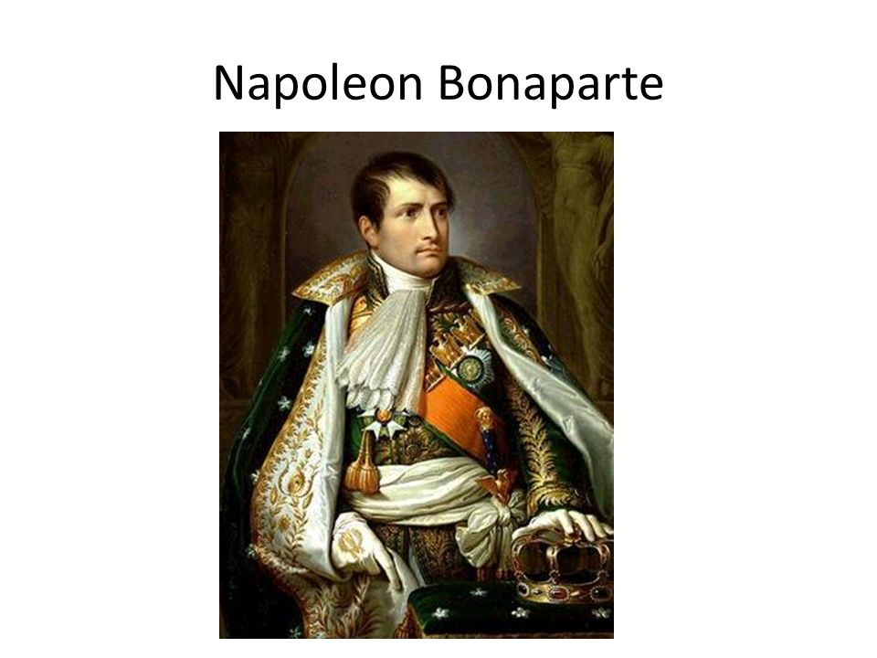 napoleon terrorism and people The revolt leader: snowball snowball is the only animal on the farm that challenges napoleon to be the leader snowball emerged as an hero after the revolt of the farm and seemed to be a good leader and won the loyalty of the people.