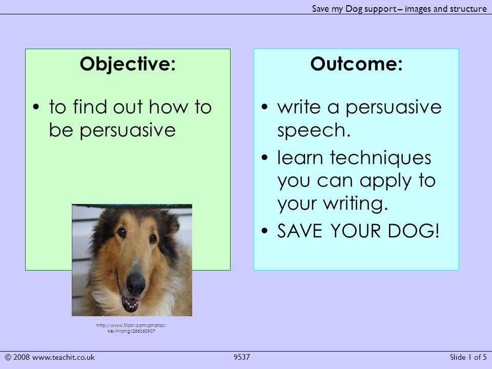 save my dog persuasive writing
