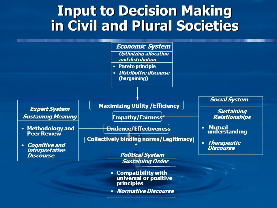 Input to Decision Making in Civil and Plural Societies