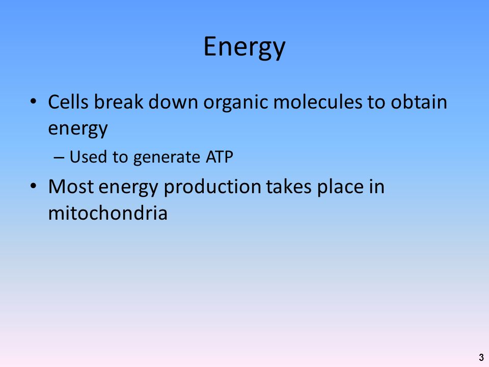 Energy Cells break down organic molecules to obtain energy