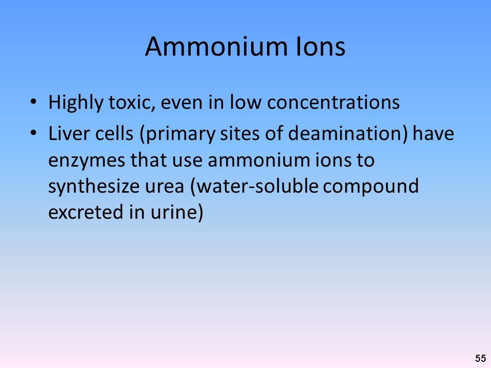 Ammonium Ions Highly toxic, even in low concentrations
