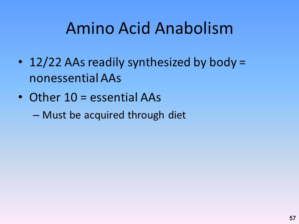 Amino Acid Anabolism 12/22 AAs readily synthesized by body = nonessential AAs. Other 10 = essential AAs.