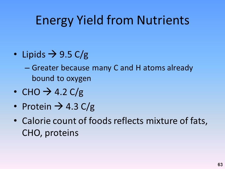 Energy Yield from Nutrients