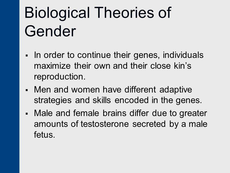 Biological Theories of Gender