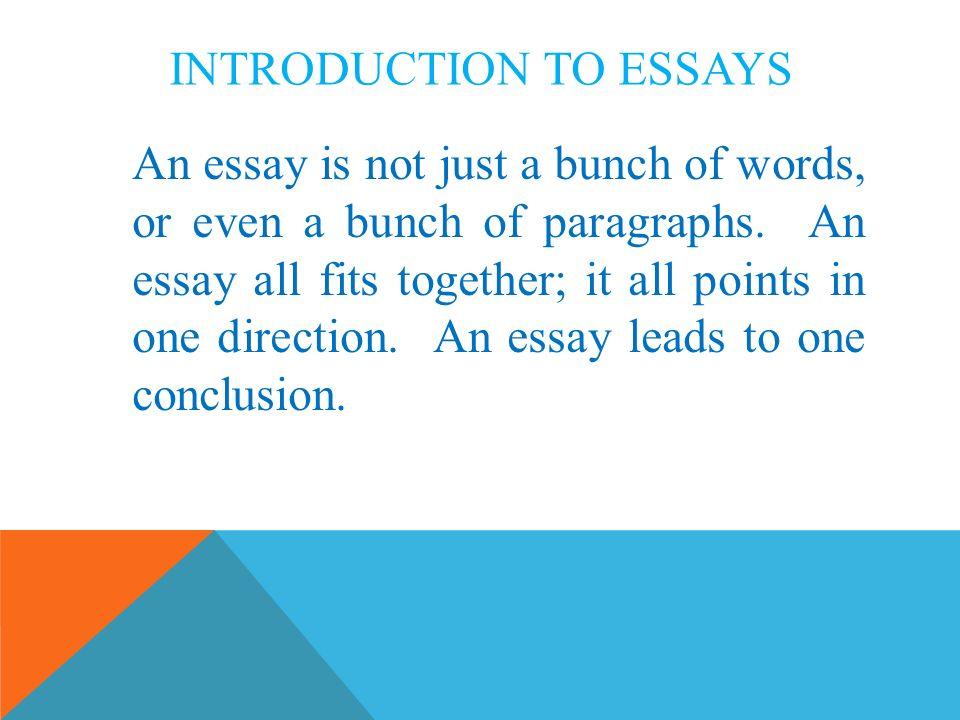 intro to essays