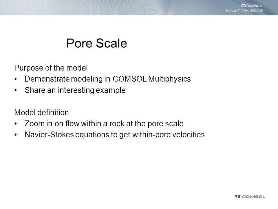 Pore Scale Purpose of the model