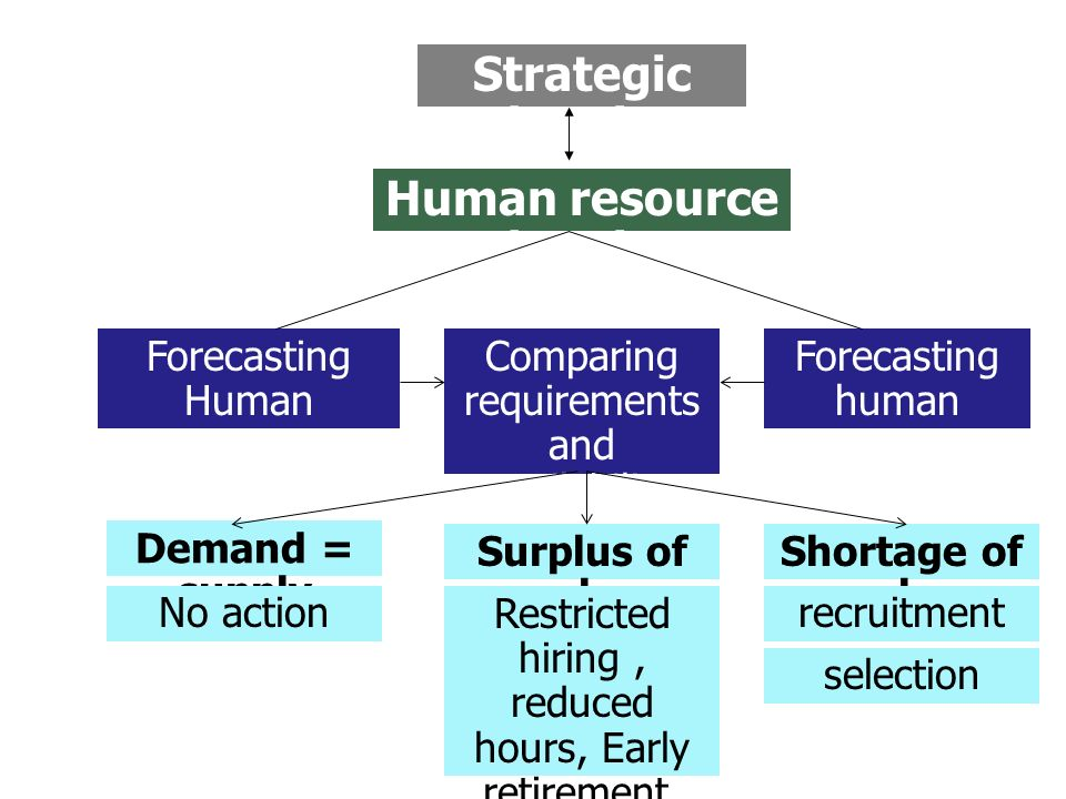 human resource demand forecasting ppt Workforce planning – balancing demand and supply labour demand forecasting is crucial any changes to the human resources needs within the business.