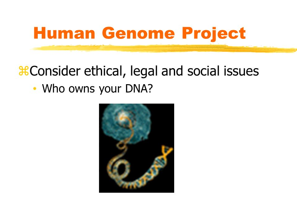 human genome project legal ethical and social implications Ethical, legal and social implications of the human genome project from the beginning, it has been understood that the human genome project will have profound ethical, legal and social (els) implications thus, between 3 and 5% of its budget has been devoted to the study of els issues.