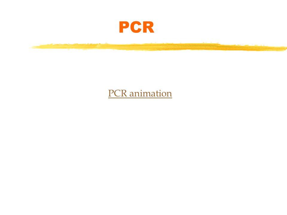 PCR types - YouTube