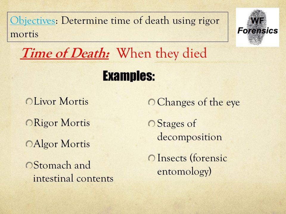 Death ppt download – Forensic Entomology Worksheet