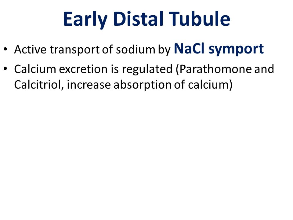 Early Distal Tubule Active transport of sodium by NaCl symport