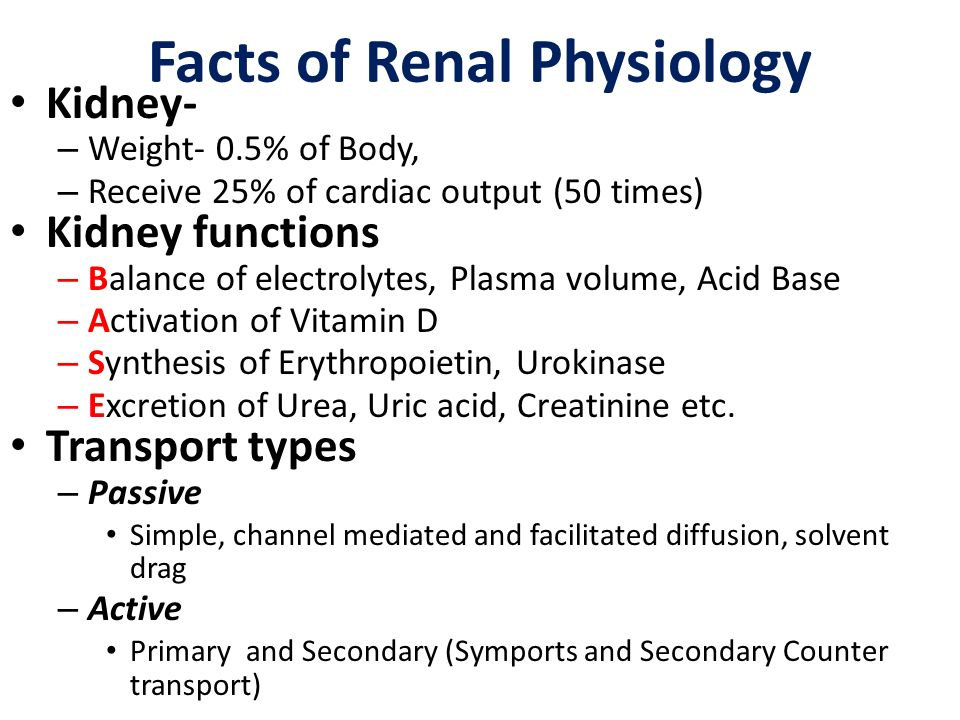 Facts of Renal Physiology