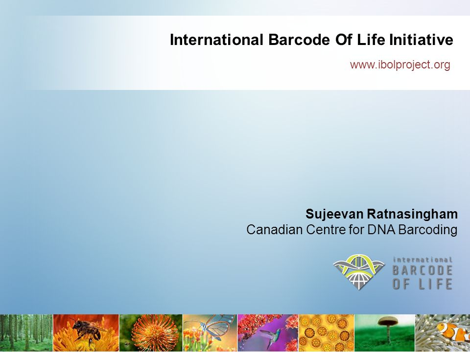 International Barcode Of Life Initiative