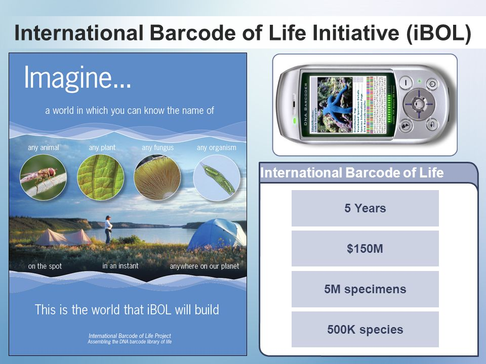 International Barcode of Life Initiative (iBOL)