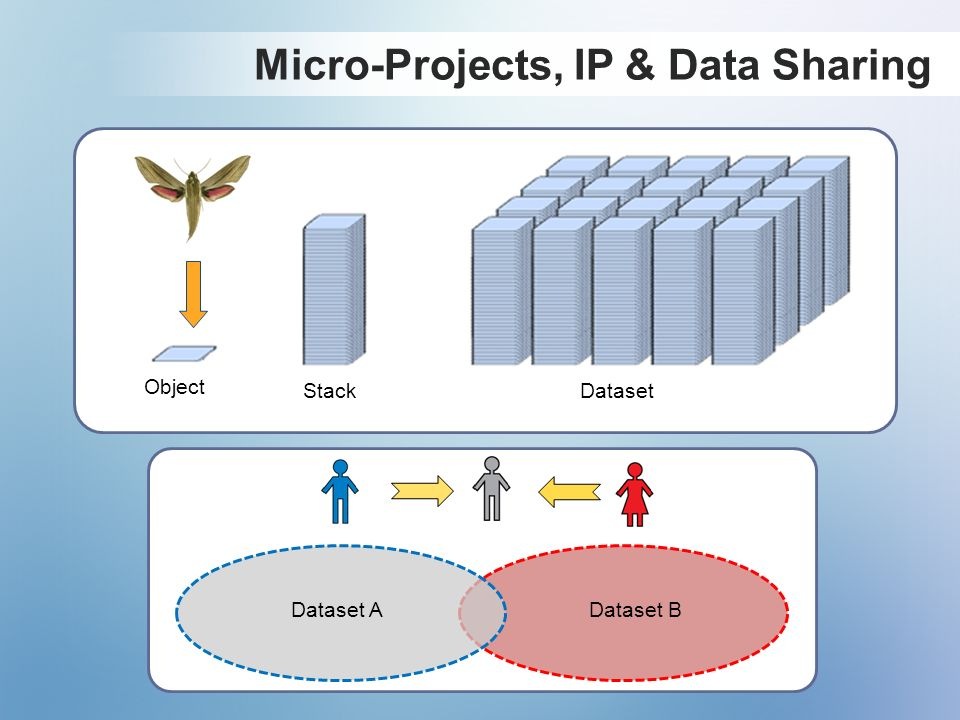 Micro-Projects, IP & Data Sharing