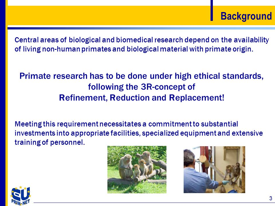 Refinement, Reduction and Replacement!