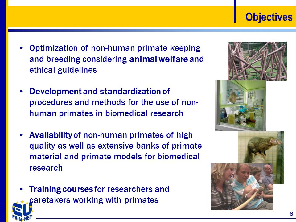 Objectives Optimization of non-human primate keeping and breeding considering animal welfare and ethical guidelines.